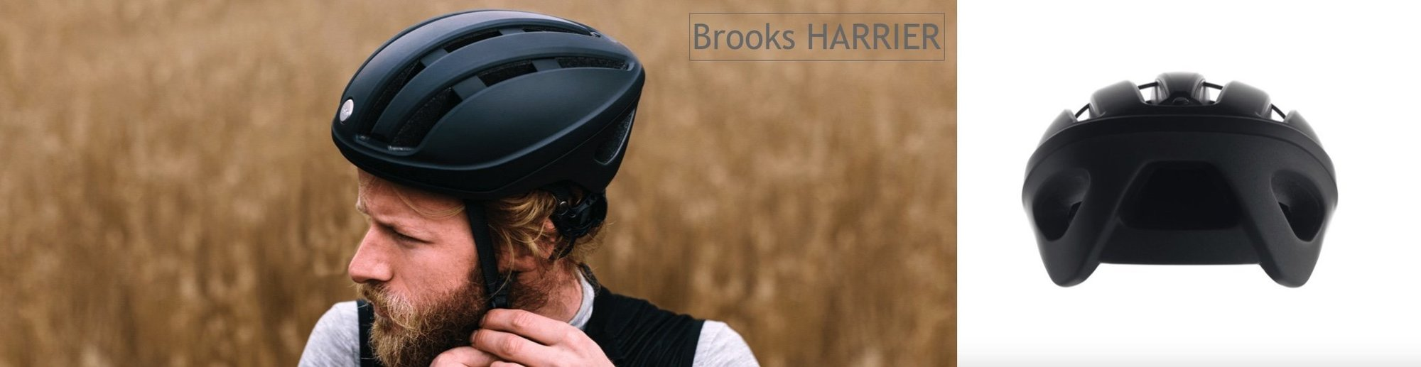 Brooks Harrier
